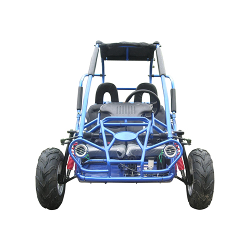 kids petrol buggy