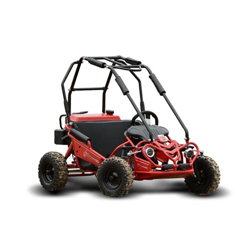 kids off road buggy