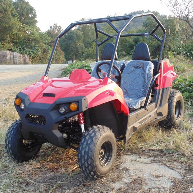 small side by side utv