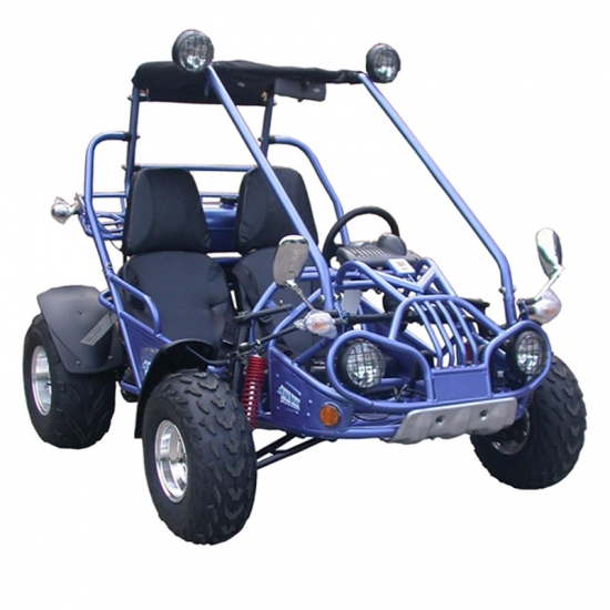Beach Buggy Off Road Go Kart