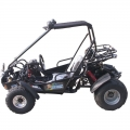 2 Seater Racing Buggy With Reverse 150cc Black