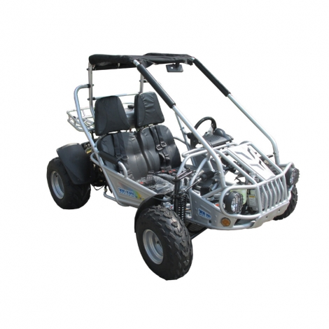 Adult All Terrian 300cc Go Kart