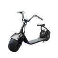 Big Wheel Electric Scooter With Seat 1000W