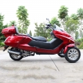 300cc 3 wheel Gas Scooter Trike