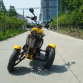 50cc 3 Wheel Gas Scooter Trike Motorycycle