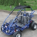 Kids Petrol Buggy 200cc Factory Price