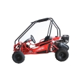 Kids Buggy 50cc Factory price