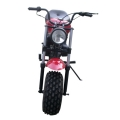 Mini Bike 196CC 4-stroke Motorcycle